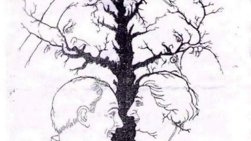 Koliko lica vidite na slici?